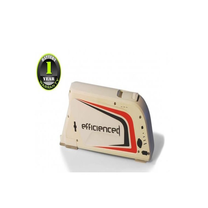 48v battery Li Ion 10.4 Ah Boxed